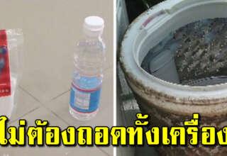 สะอาดเหมือนใหม่ วิธีล้างเครื่องซักผ้าเอง แค่ใช้น้ำส้มสายชู
