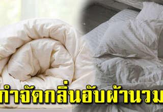 3 วิธีง่ายๆ แก้ผ้าห่มมีกลิ่น แม่บ้านทำตามได้